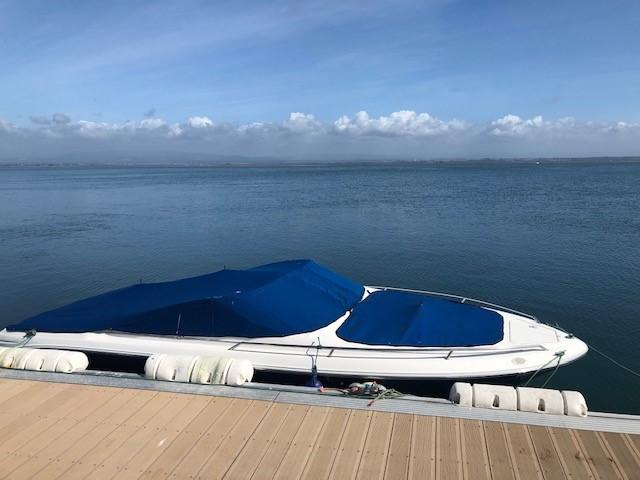 SEA RAY 210
